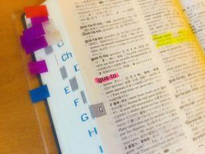 辞書 スペイン語 spanish dictionary